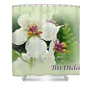 Happy Birthday - Floral - Moth Mullein Shower Curtain