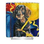 Happy Birthday Shower Curtain by Barbara Keith