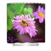 Happy Birthday Daisy Shower Curtain