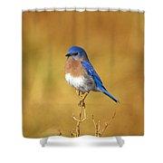 Happy Blue Bird Shower Curtain