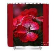 Happy Bright Geranium And Design Shower Curtain