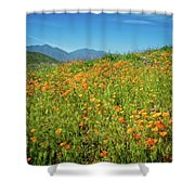 Happy Days In Walker Canyon Shower Curtain