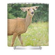 Happy Deer Shower Curtain