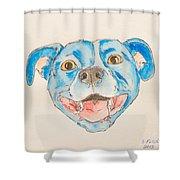 Happy Dog Blue Shower Curtain