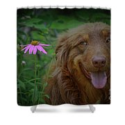 Happy Dog Days Shower Curtain