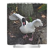 Happy Duck Shower Curtain