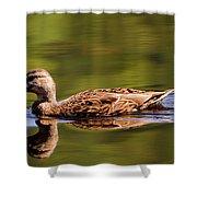 Happy Duck Shower Curtain