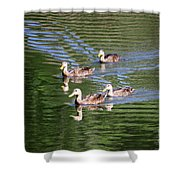 Happy Ducks On The Pond Shower Curtain