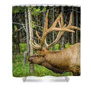 Happy Elk Shower Curtain