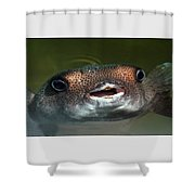 Happy Fish Shower Curtain