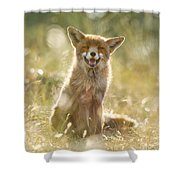 Happy Fox Is Happy Shower Curtain