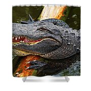 Happy Gator Shower Curtain