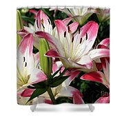 Happy Lilies Shower Curtain