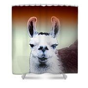Happy Llama Shower Curtain