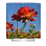 Happy Mother's Day Flowers Shower Curtain