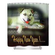 Happy New Year Art 2 Shower Curtain