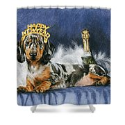 Happy New Year Shower Curtain by Barbara Keith