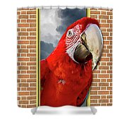 Happy Red Parrot Shower Curtain