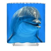 Happy Smiling Dolphin Shower Curtain
