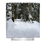 Happy Snowman Shower Curtain