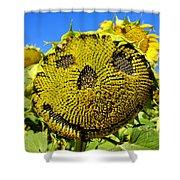 Happy Sunflower Shower Curtain by Fabrizio Troiani