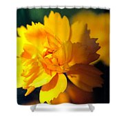 Happy Yellow Flower Shower Curtain