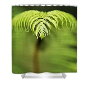 Hapuu Fern Shower Curtain