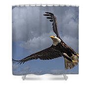 Hard Banking Eagle Shower Curtain