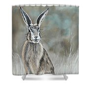 Hare At Dawn Shower Curtain