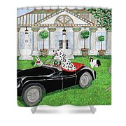 Hares And Hound Shower Curtain