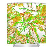 Harmony 11 Shower Curtain