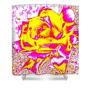 Harmony 12 Shower Curtain