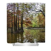 Harmony Of The Swamp Shower Curtain