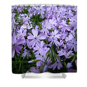 Harmony To Make Small Things Grow Shower Curtain