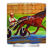 Harness Racing At Bluebonnets Shower Curtain
