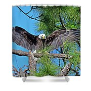Harriet As I Open Wings Magics Happen Shower Curtain