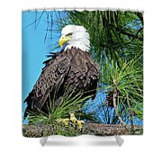 Harriet One More Look  Shower Curtain