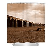 Harringworth Viaduct And Horses Grazing Shower Curtain