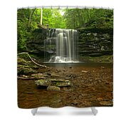 Harrison Wrights Falls In The Forest Shower Curtain