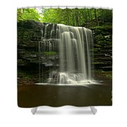 Harrison Wrights Forest Falls Shower Curtain