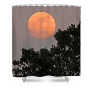 Harvest Moonrise Shower Curtain