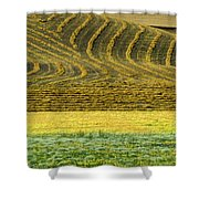 Harvested Fields Of The Palouse Shower Curtain