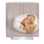 Hatching Chicken 11 Of 22 Shower Curtain