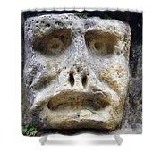Haunted Stone Heads Shower Curtain