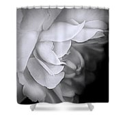 Haunting Beauty Monochrome Rose Shower Curtain