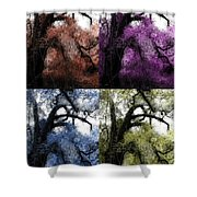 Haunting Beauty Of Hues Shower Curtain