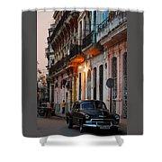 Havana Shower Curtain
