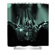 Have A Great Flight Shower Curtain