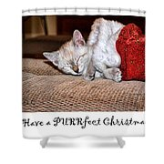 Have A Purrfect Christmas Shower Curtain