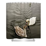 Have To Behave Yourself. Shower Curtain